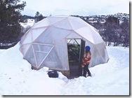 winter greenhouse 2