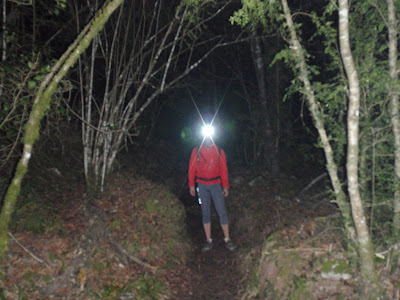 Caminant de nit