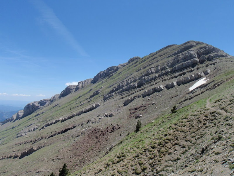 Vessant est del Puig Terrers