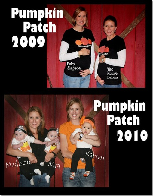 Pumpkin Patch Collage 2