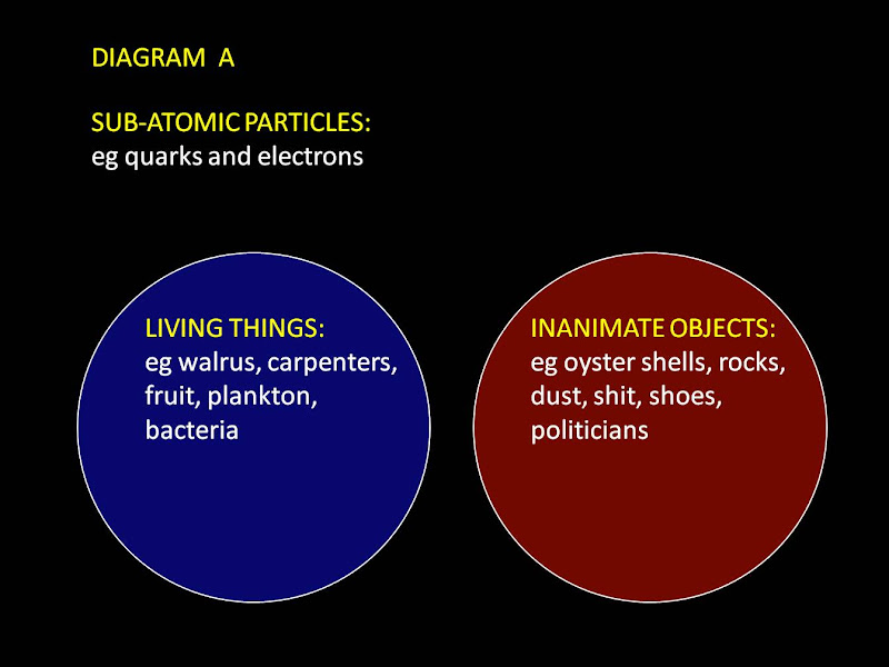 Diagram A--living-things-vs-inanimate-objects