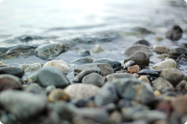 Beach play 239
