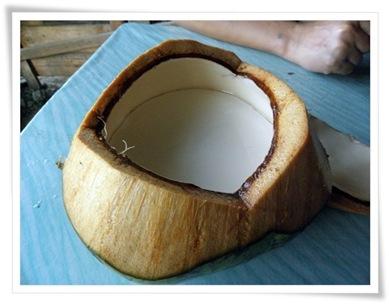 kelapa puding