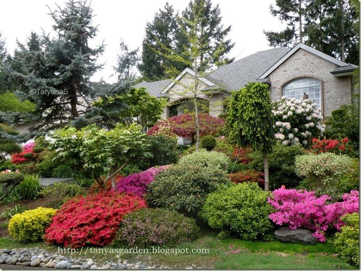 p1010061 - Garden Ideas Zone 6