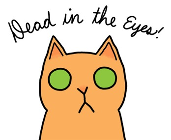 heys-guys-this-is-my-cat-lil-deadintheeyes