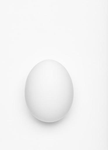 _DSC7291_egg