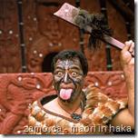Maori in Haka