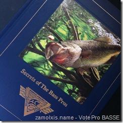 Vote Pro BASSE