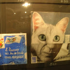mail-art : Picasso en chat !