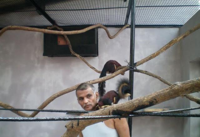 Home Zoo of One Arab