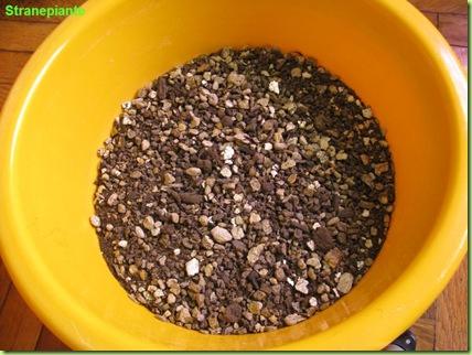 composta-semenzali