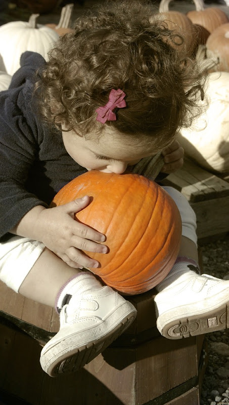 coco eating pumpkin