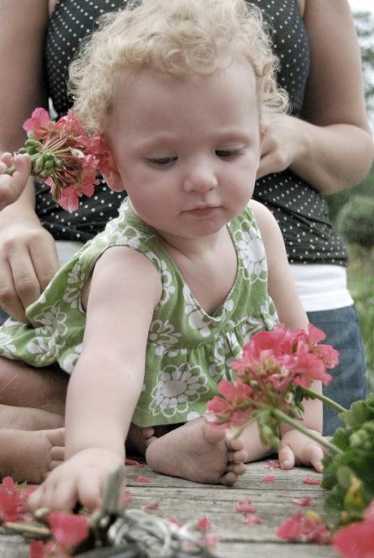 fifi with geraniums