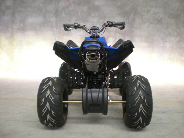 250cc Quad Bike Blue Rear Back