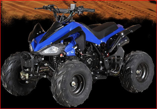 110cc Raptor Style Junior Kids Quad Bike -Blue