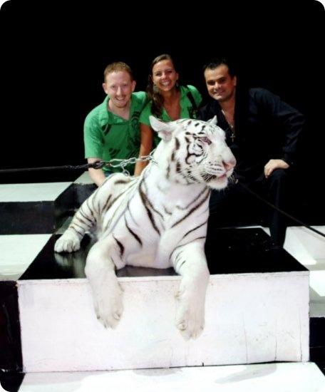 jupiter-the-white-tiger
