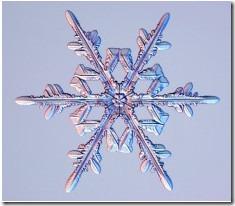 snowcrystal-com-001