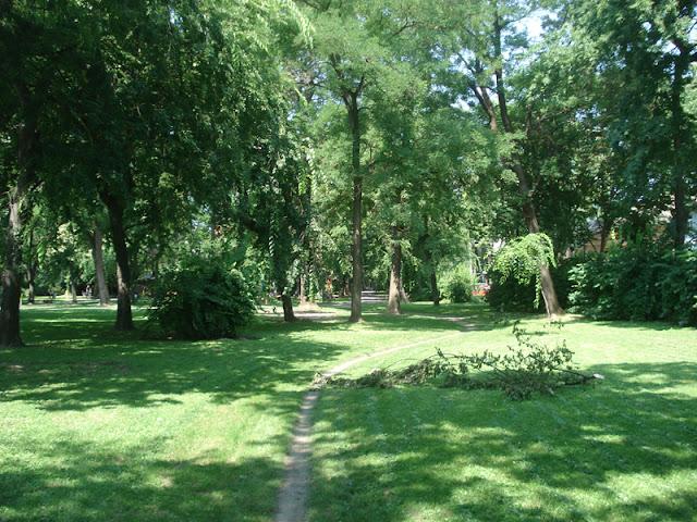 Zelenilo Sombora