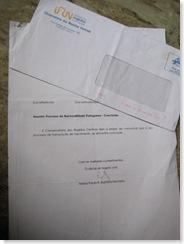 Portuguese passport process