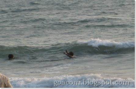 Goan beaches