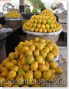 Goa mangoes
