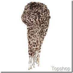 LeopardPrintScarf_topshop