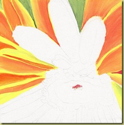 Orange Gerber Daisy WIP1