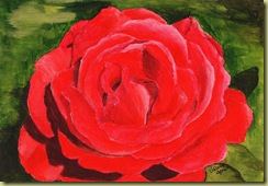 Rose Acrylic