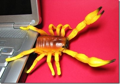 Hemingway funs Scorpion USB Flash Drive 1