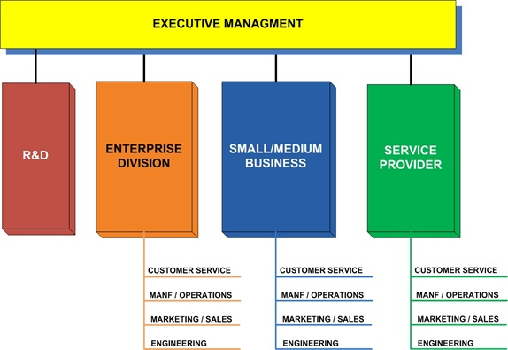 CISCOSystems-OrganizationStructure-1
