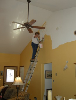 Painting the Living Room (3)