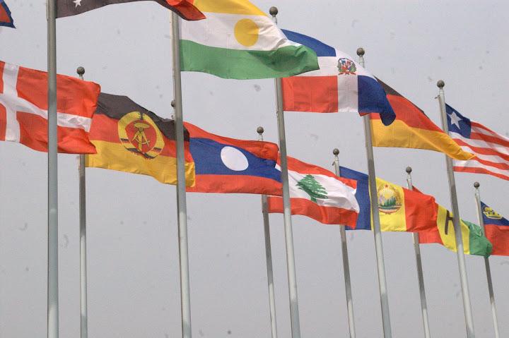 Unvereint in alle Ewigkeit? West- und ostdeutsche Flagge in Seoul