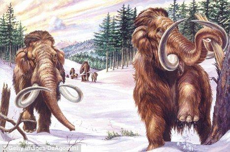 Cientistas japoneses irão ressuscitar um extinto mamute que morreu durante a última era glacial