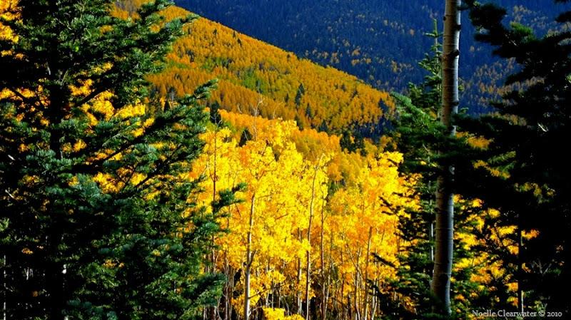 Aspen Vista Santa Fe