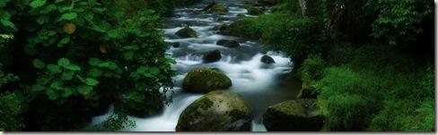 rio saverge