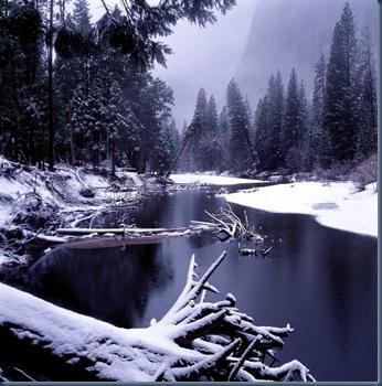 winterland3