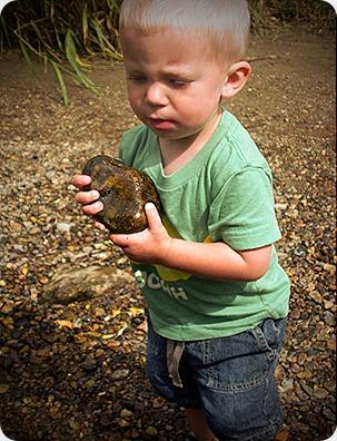 throwing rocks2