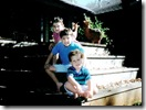 jonas-brothers-bebes7