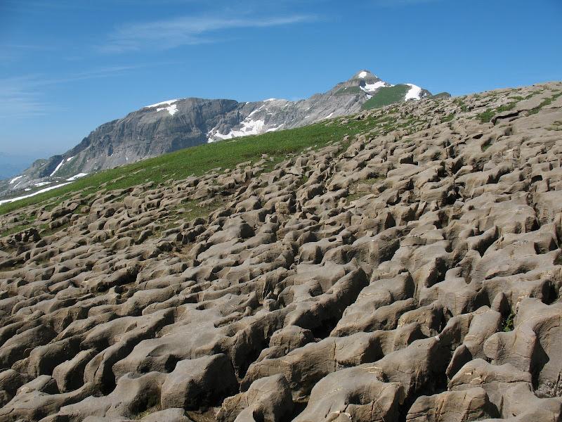 [Alpes 07-2010] quelques photos IMG_4203