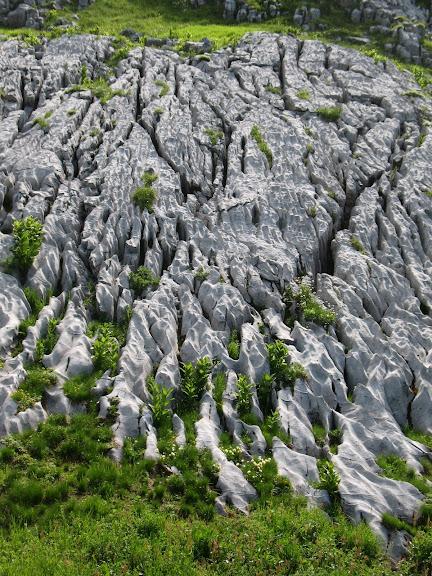 [Alpes 07-2010] quelques photos IMG_4432