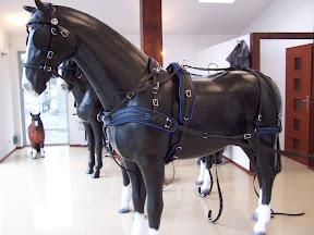Arden Dexter Pro Wipe Clean BioThane Pairs Horse Harness