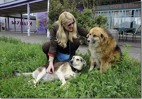 Danica, Lula i Мilica