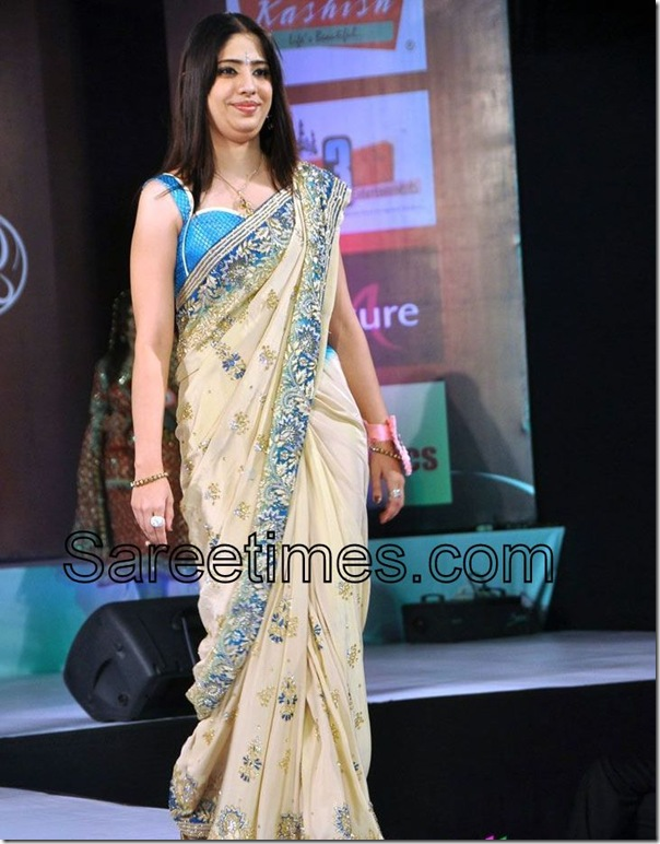 Cream_Embroidery_Designer_Saree