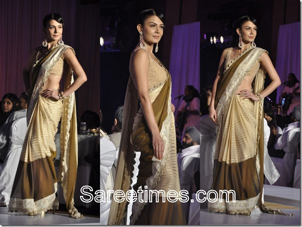 Cream_Snaf_Designer_Saree