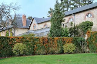 Sortie Photo 15/11/09 - Chateau de Breteuil Breteuil-12-boc