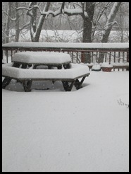 snowfeb 006