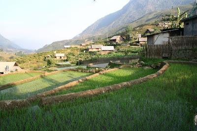 Village Hmong