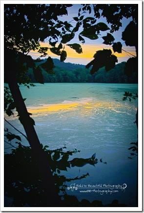 Radnor Lake 7-17-10-2
