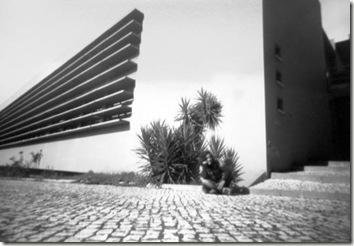 imagerie-pinhole-marialamas-neg-7