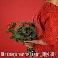 hidden-flowers-thumb4046990